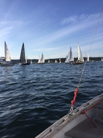 Robert Dall sailing with big boats - Seattle Duck Dodge Sailboat Race in a Minto on July 16, 2019
